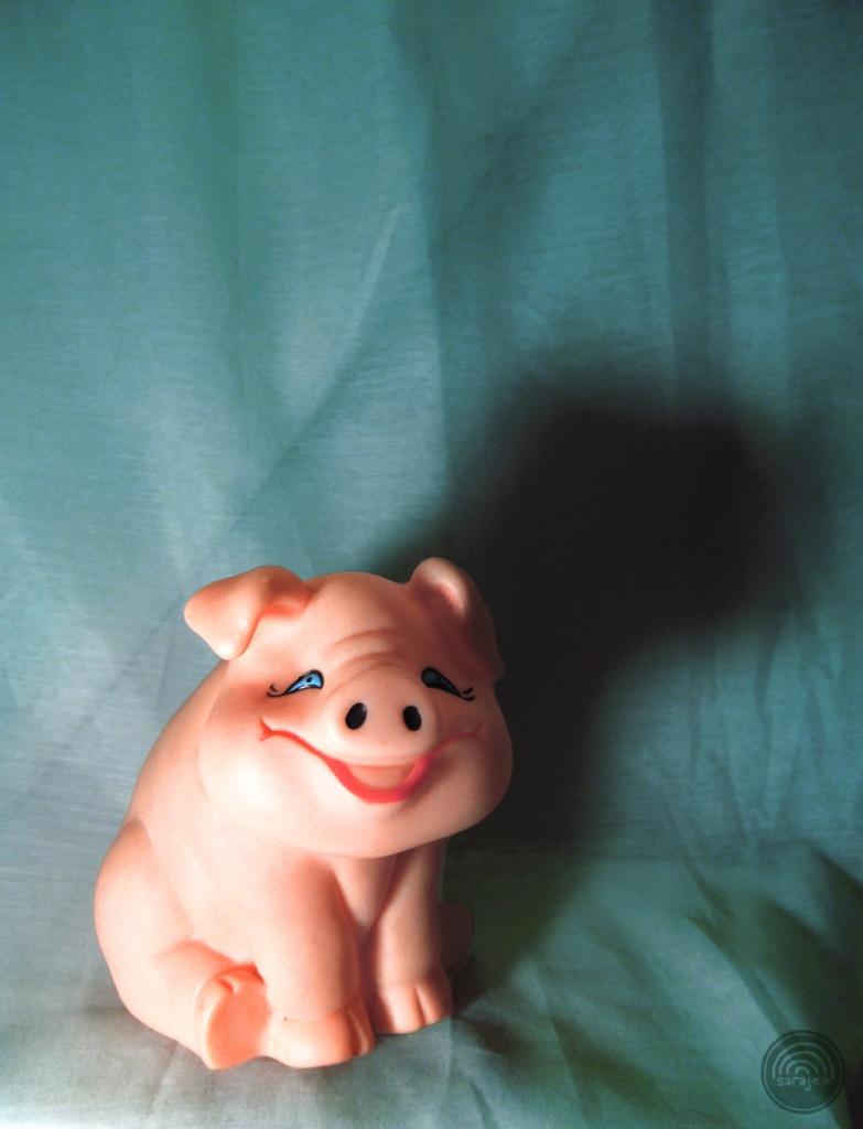 Refrigerator Pig
