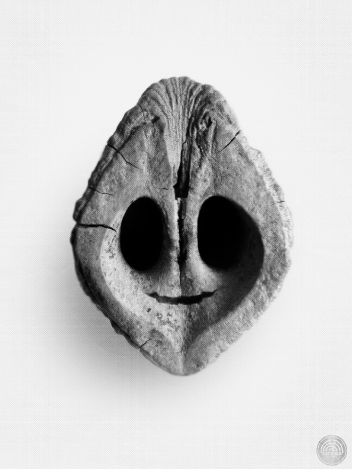 Photograph: black and white photo of the inside of a black walnut shell. The anatomy of the shell and a small additional crack make it look like it is smiling. It is exceedingly cute.