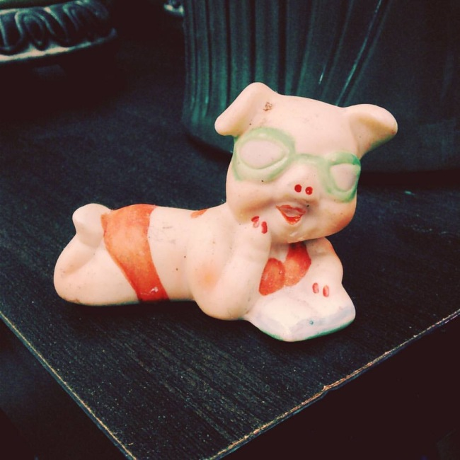 "Photograph of an anthromorphic pig in a ""sexy"" pose and wearing makeup and a red bikini."