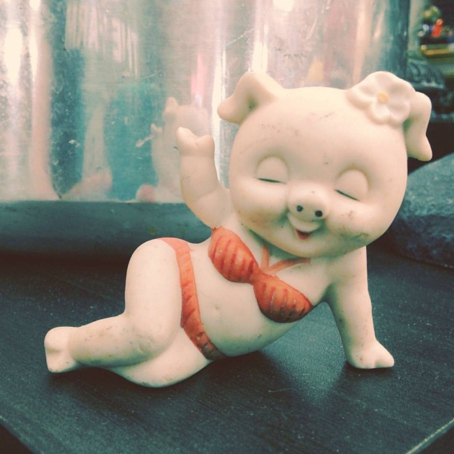 "Photo of an anthromorphic pig, in a ""sexy"" pose, wearing makeup and a red bikini"